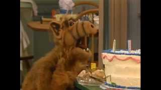 "ALF.""HAPPY ANNIVERSARY"""