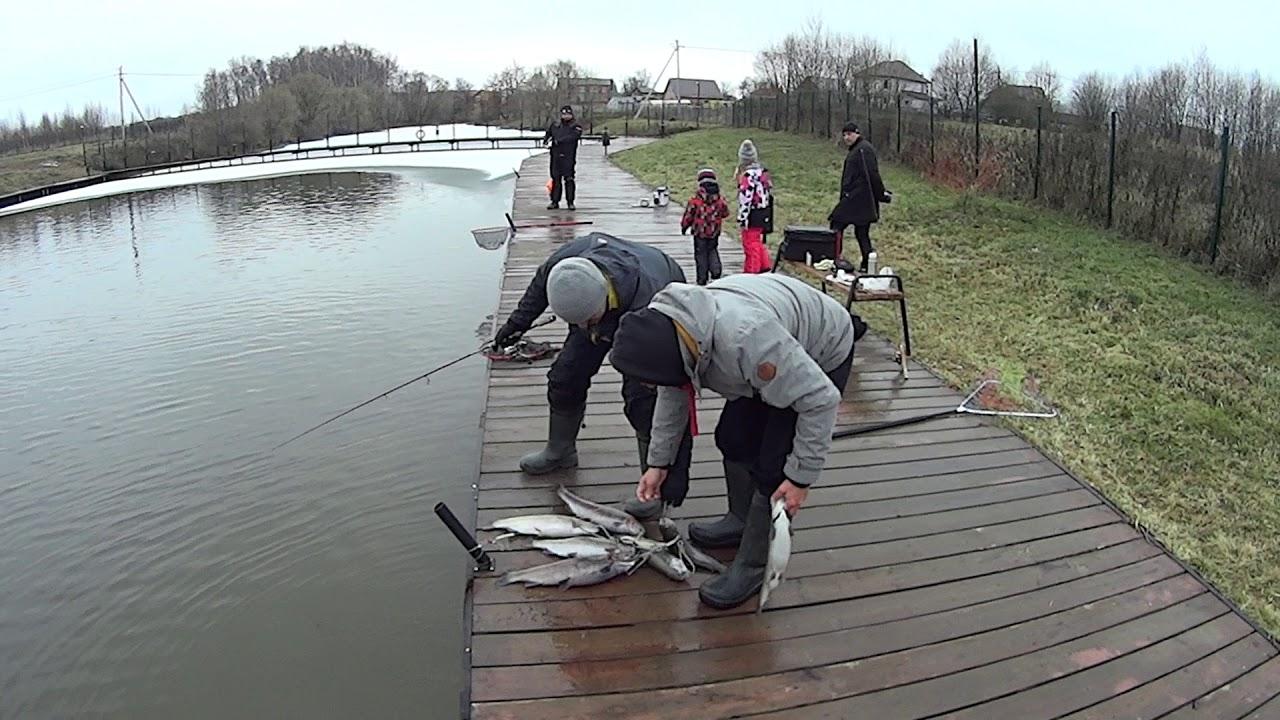 Рыбалка в фишерикс отзывы