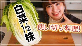 【白菜を大量消費】1/2株使い切りで美味しい料理に!【簡単レシピで4品】