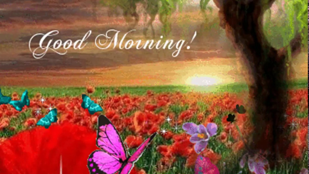Warm good morning wish greetings and quotes youtube warm good morning wish greetings and quotes m4hsunfo