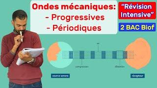 2 BAC Biof - Les Ondes Mécaniques: Révision Intensive - Prof. Noureddine