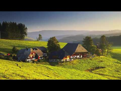 Exploring Germany's Mystical Black Forest