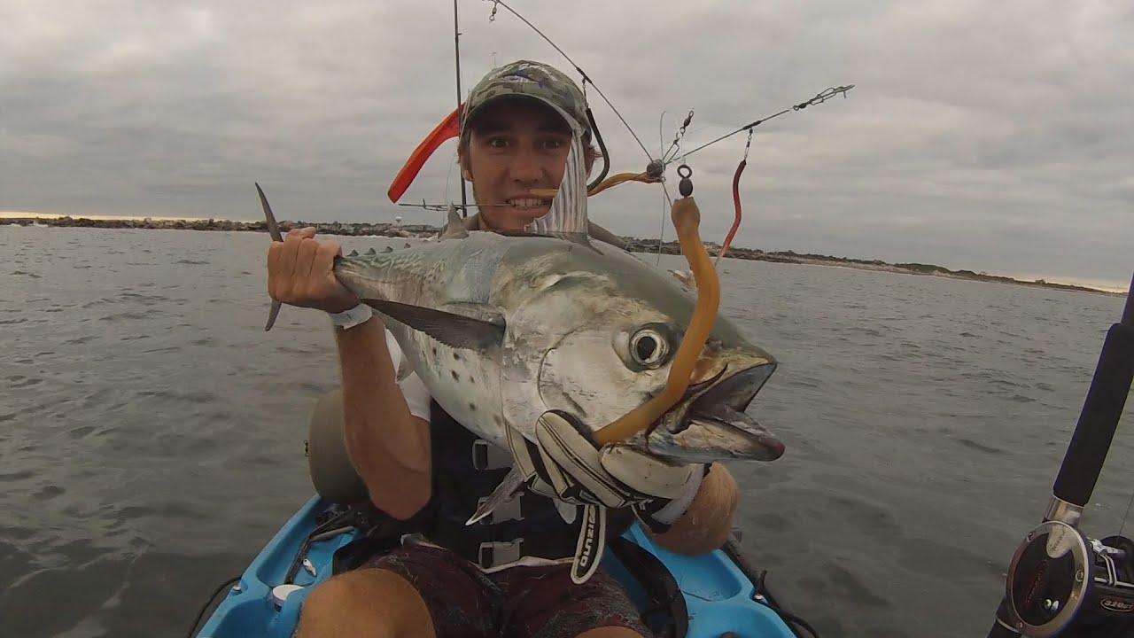 False albacore on umbrella rig youtube Umbrella rig fishing