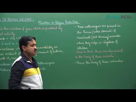 NEET Video Lectures of Microbes in Human Welfare by Himanshu Agarwal HASir thumbnail