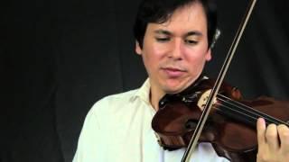 Violino Solo - Eine Kleine Nachtmusik