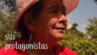Tema: TRAILER 2- HISTORIAS DE CAFE: MIRADAS A LA ECONOMÍA SOLIDARIA DE LA SELVA CENTRAL