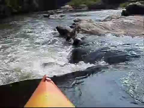 Dan River NC Kayaking