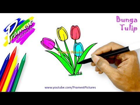 Tulip Cara Menggambar Dan Mewarnai Gambar Bunga Untuk Anak Anak Youtube