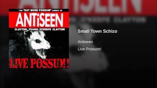 Small Town Schizo