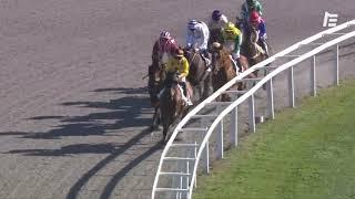 Vidéo de la course PMU PRIX ADOLPHE ROSSIO