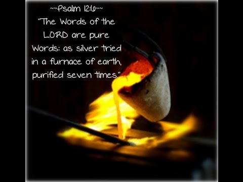 Image result for psalm 12:6