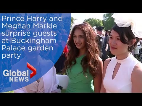 Harry & Meghan: Royal fans react to meeting Duke and Duchess of Sussex