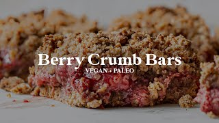 Berry Crumb Bars // vegan, gluten-free, paleo option!