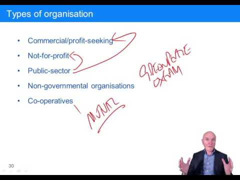 CIMA BA1 Organisations, Types of organisations, Measurement of company performance