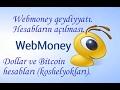 Webmoney-dən qeydiyyat. Dollar (WMZ) və Bitcoin (WMX) hesablarının açılması
