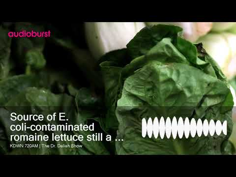 Source of E. coli-contaminated romaine lettuce still a mystery, FDA says