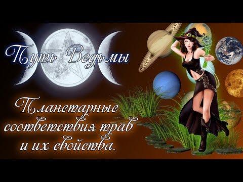 Путь Ведьмы - Планетарные соответствия трав и их свойства. Магия Викка#34