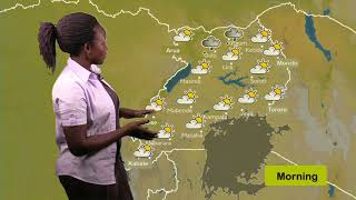 Weather forecast by Daphine   07 08 2019 by daphine K, Nsamba