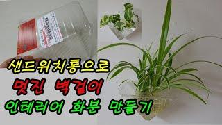 재활용품으로 화분 만들어 나비란 수경재배하기