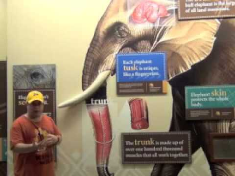 Cleveland Metroparks Zoo Field Trip