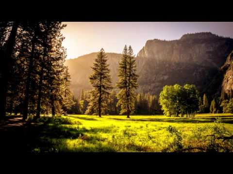 House Music Mix 2016 #9 For Gaming, Studying, Workout Or Relaxing By Musica4You