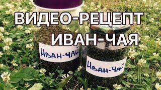 Иван-чай. Пошаговый видео-рецепт.