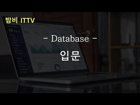 [DB] 입문 (기초 쿼리 실습) ★밤비와 코딩