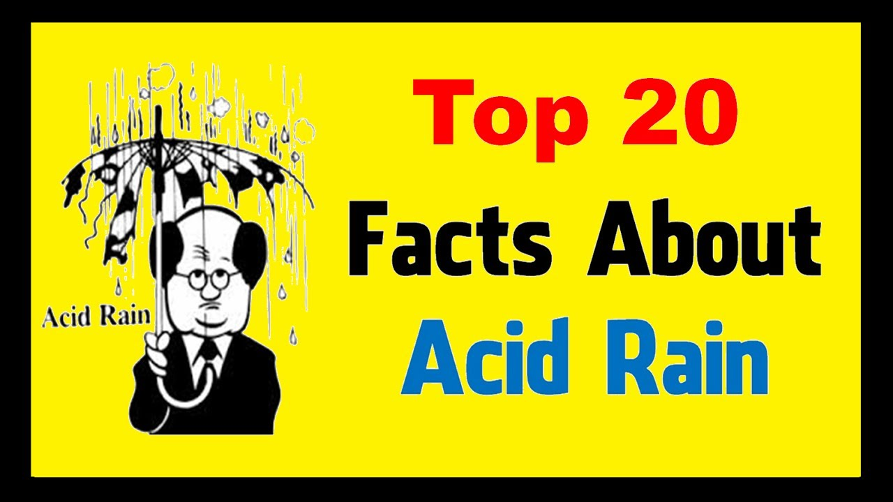 Acid Rain - Unknown Facts - YouTube
