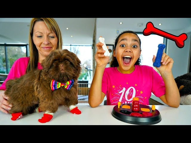 Testing Weird Dog Toys And Gadgets With Tiana's Puppy