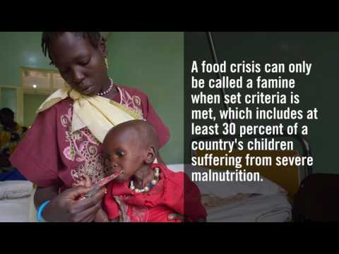 Facts Matter: Global Famine Crisis