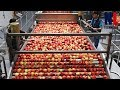 - Modern Food Processing Technology with Cool Automatic Machines That Are At Another Level Part 5