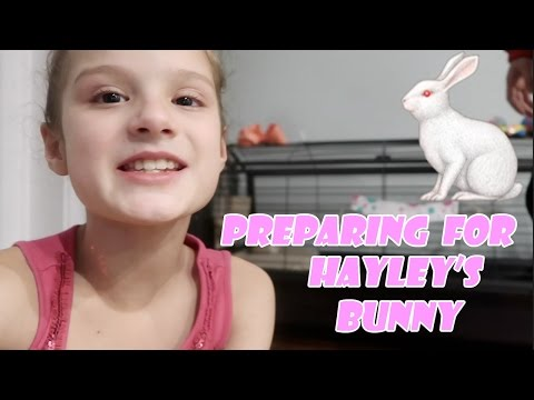 Preparing For Hayley's Bunny 🐇 (WK 324.2) | Bratayley