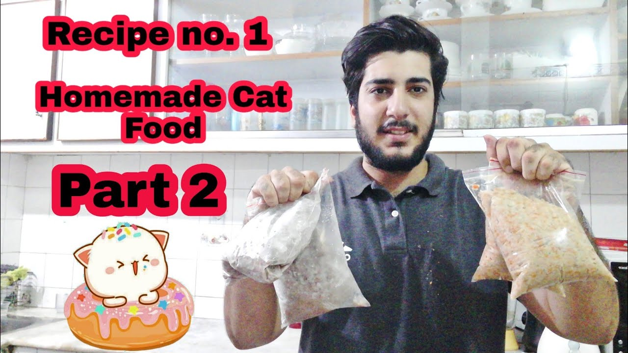 Homemade Cat Food Persian Cat Food Recipe How To Make Cheap Homemade Cat Food At Home Part 2 Youtube