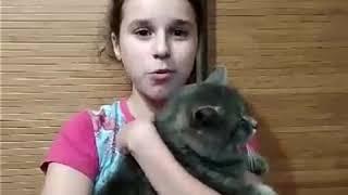 Как делать легко коту укол🤔