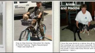 Dog Trainer Long Island