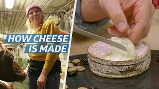 How Cheese Is Made — How to Make It