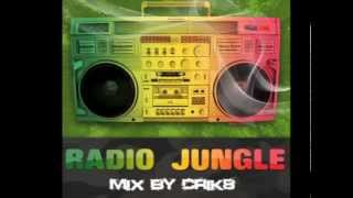 Drum and Bass ragga jungle mix - The best