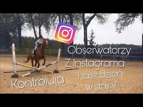 Obserwatorzy Z INSTAGRAMA Kontrolują Nasz Dzień W STAJNI! / Farma Noego