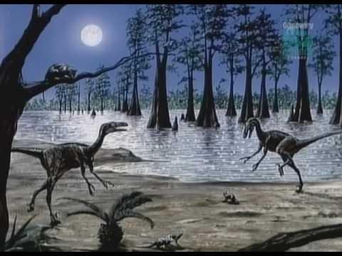 Paleoworld- Troodon Dinosaur Genius (Part 2)