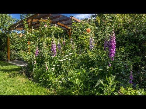 Nasz piękny ogród