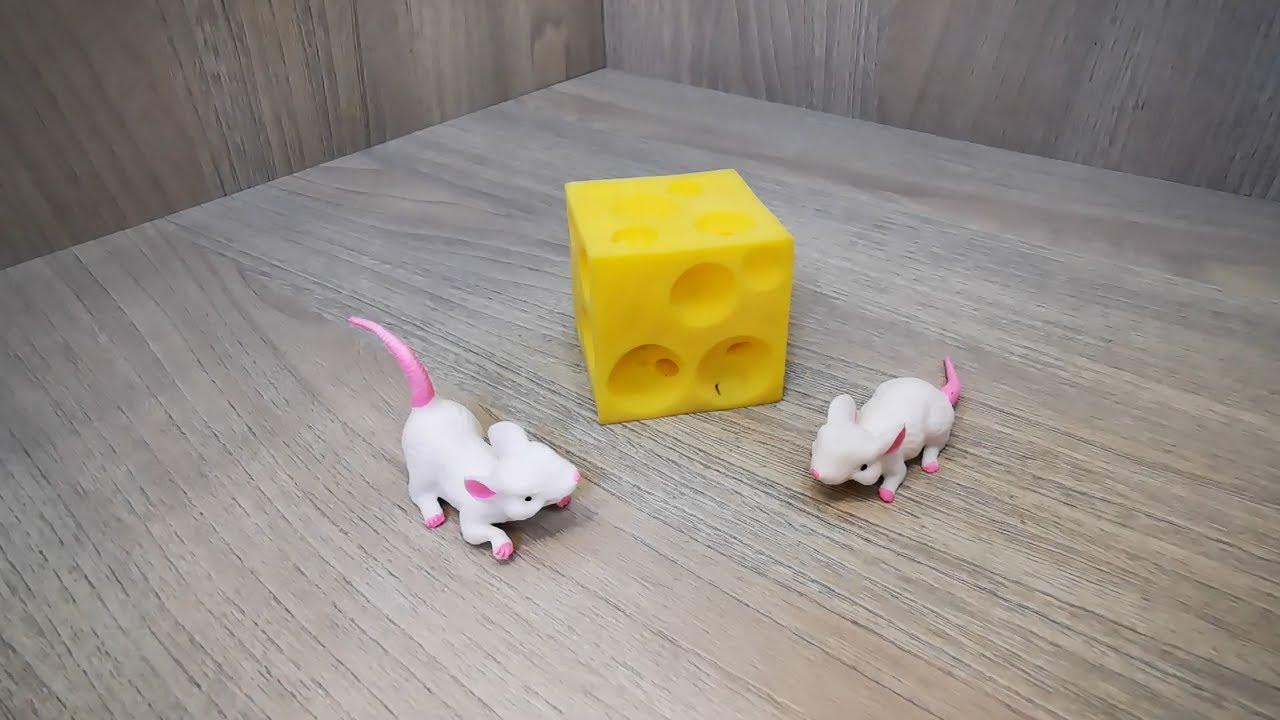 Мышка любит сыр