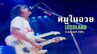 หมูในอวย - โลโซ {Concert TV5}