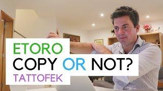 Would You Copy This Trader? Tattofek - Etoro
