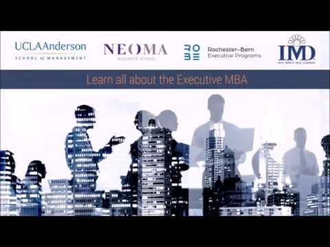 Learn all about the Executive MBA