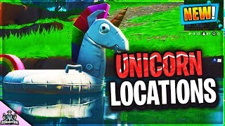 Search UNICORN FLOATIES at Swimming Holes 14 Days of Summer Challenges Fortnite Location Guide