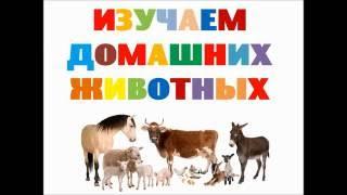 Изучаем животных. Кто живет на ферме. Обучающее видео для детей