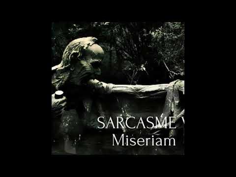 Northern Sky - Chapitre V : Miseriam (Single: 2020)