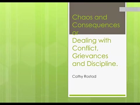 Chaos and Consequences - Cathy Rostad