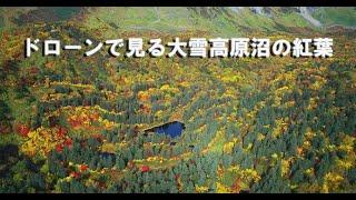 紅葉美しい錦色の森 秋の絶景ドローンで見る北海道「大雪高原沼めぐり」 2020