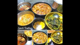 Bengali Lunch Routine Vlog (Fish Special) | Indian Daily Routine - Bengali Video Blog # 5